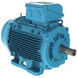 WEG electric motor